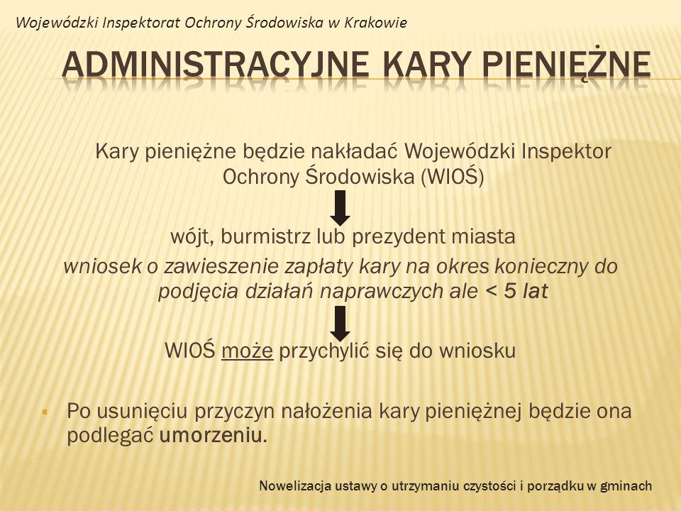 Administracyjne kary pieniężne