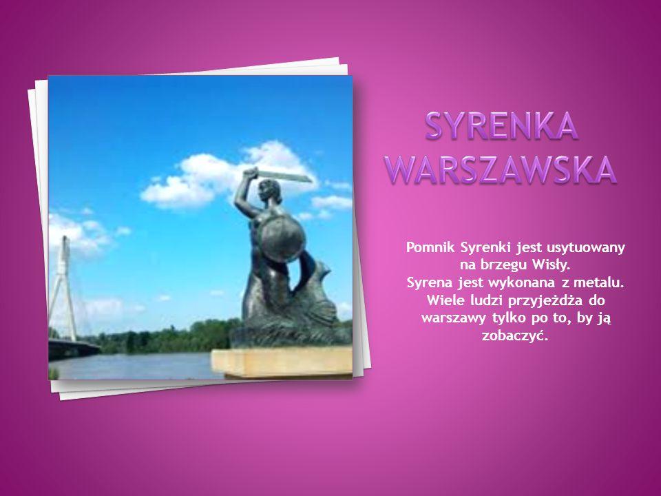 Pomnik Syrenki jest usytuowany na brzegu Wisły.