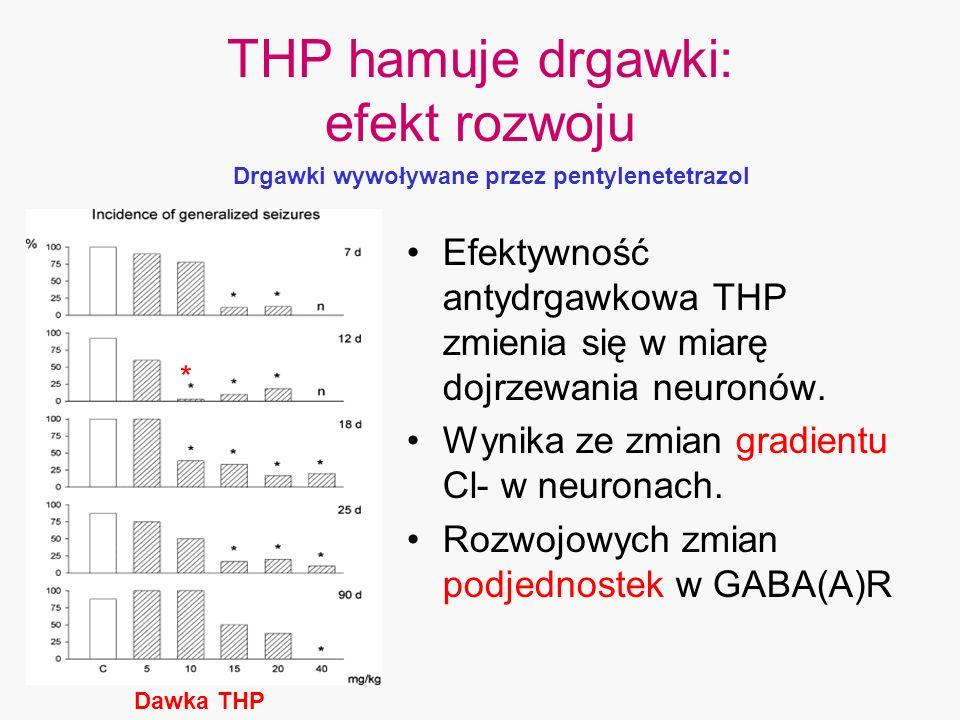 THP hamuje drgawki: efekt rozwoju