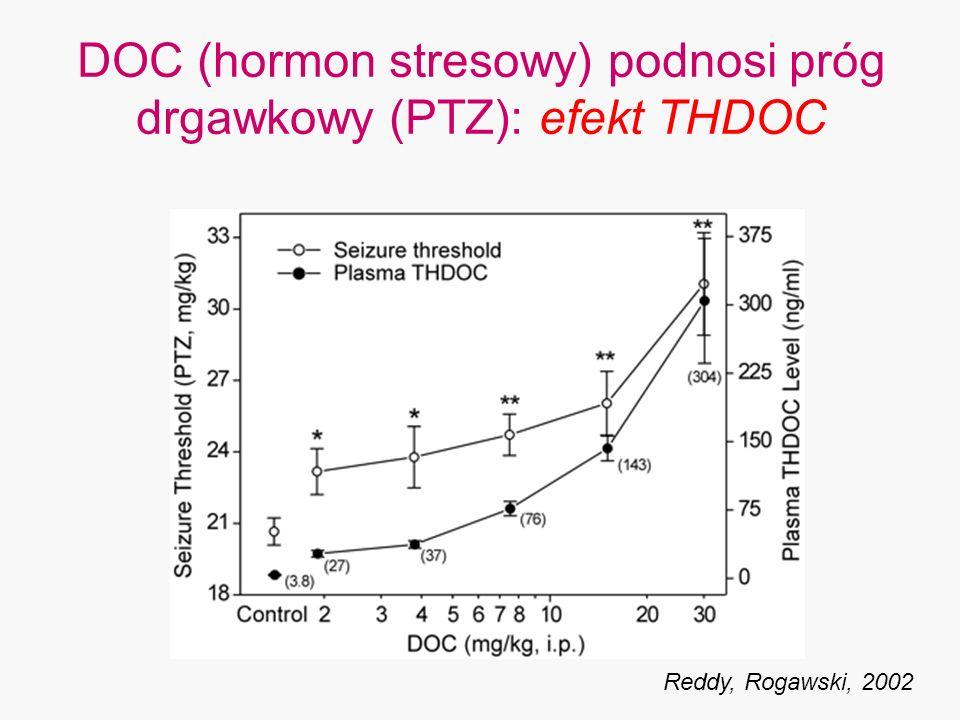 DOC (hormon stresowy) podnosi próg drgawkowy (PTZ): efekt THDOC