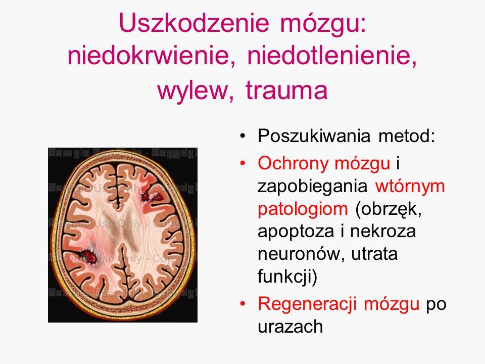 Uszkodzenie mózgu: niedokrwienie, niedotlenienie, wylew, trauma