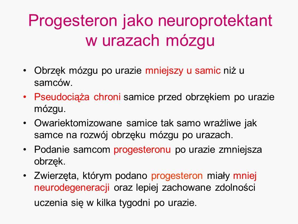 Progesteron jako neuroprotektant w urazach mózgu