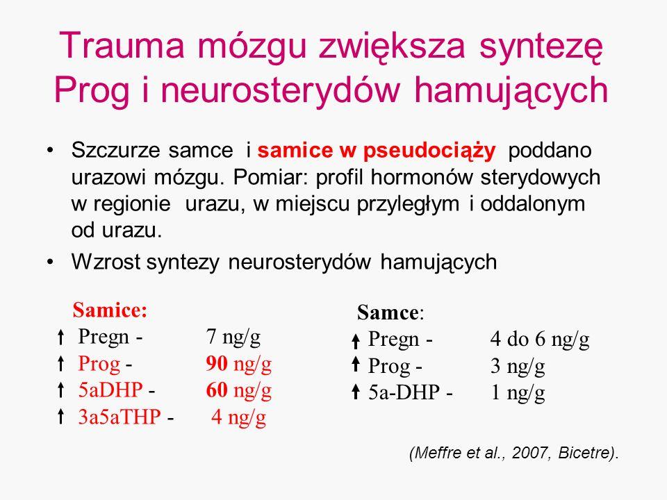 Trauma mózgu zwiększa syntezę Prog i neurosterydów hamujących