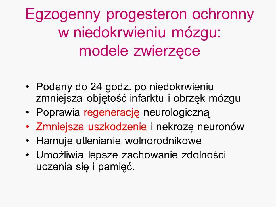 Egzogenny progesteron ochronny w niedokrwieniu mózgu: modele zwierzęce