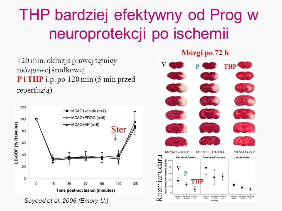 THP bardziej efektywny od Prog w neuroprotekcji po ischemii