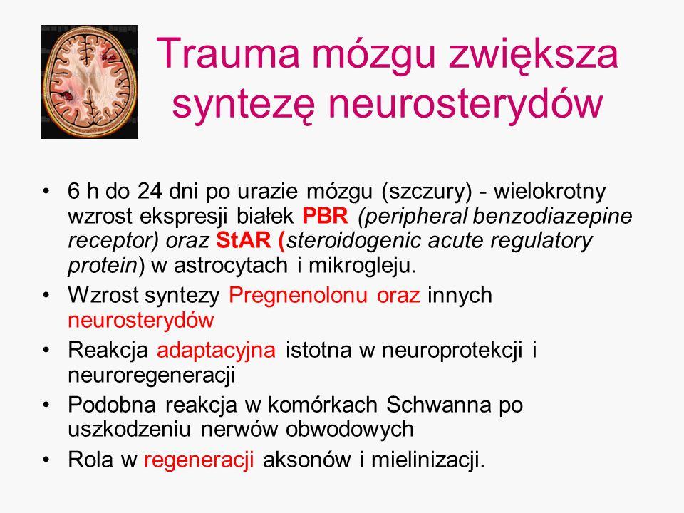 Trauma mózgu zwiększa syntezę neurosterydów
