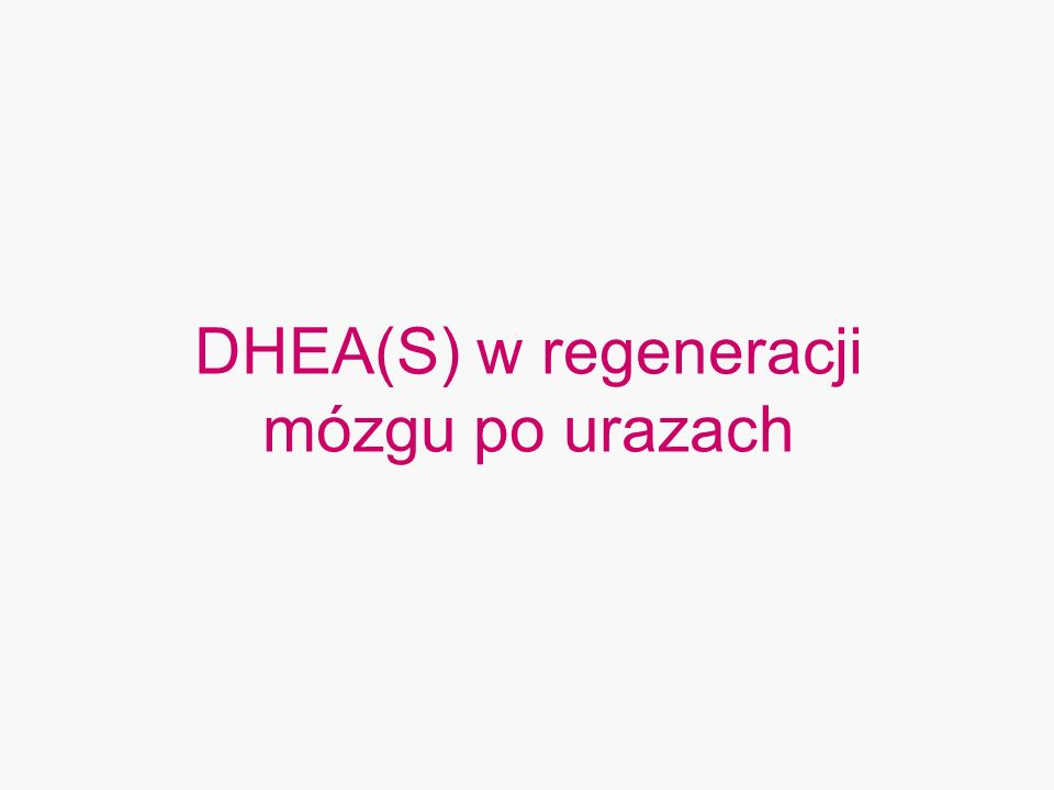 DHEA(S) w regeneracji mózgu po urazach