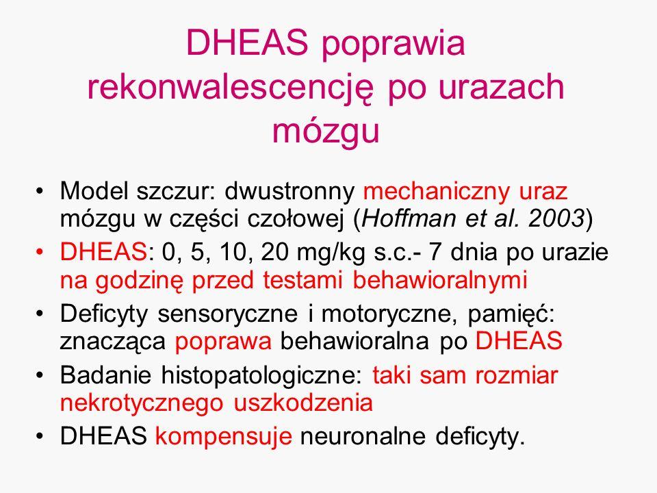 DHEAS poprawia rekonwalescencję po urazach mózgu