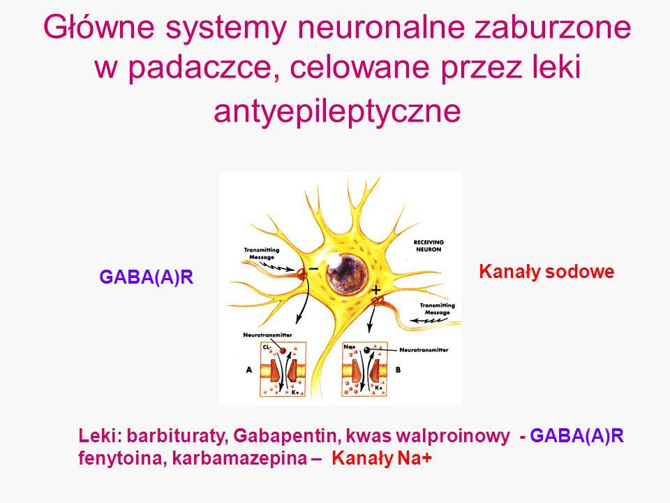 Główne systemy neuronalne zaburzone w padaczce, celowane przez leki antyepileptyczne