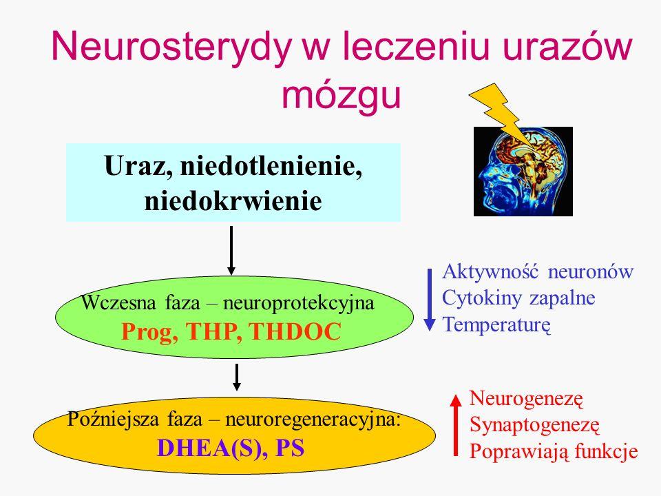 Neurosterydy w leczeniu urazów mózgu