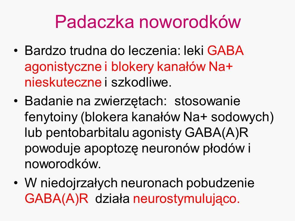 Padaczka noworodków Bardzo trudna do leczenia: leki GABA agonistyczne i blokery kanałów Na+ nieskuteczne i szkodliwe.