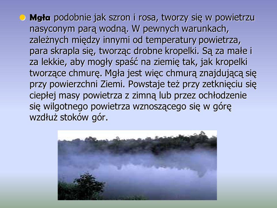 Mgła podobnie jak szron i rosa, tworzy się w powietrzu nasyconym parą wodną.