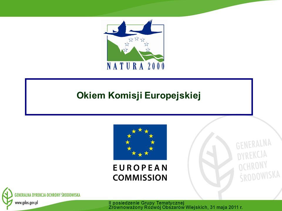 Okiem Komisji Europejskiej