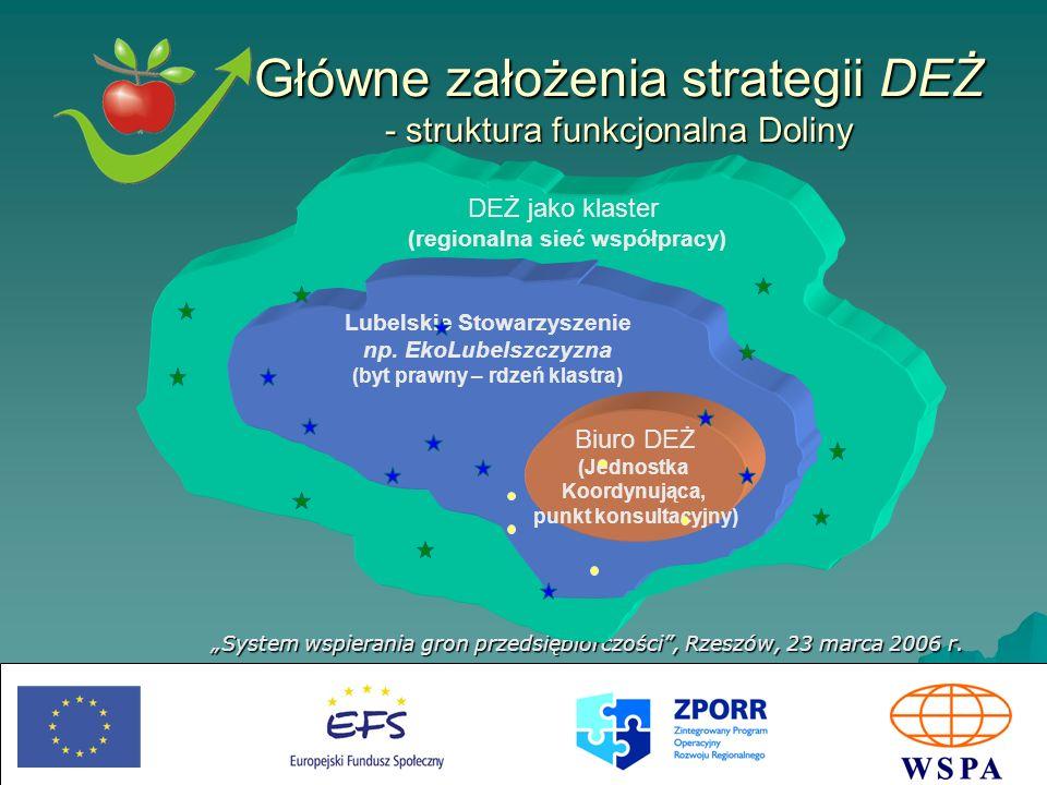 Główne założenia strategii DEŻ - struktura funkcjonalna Doliny