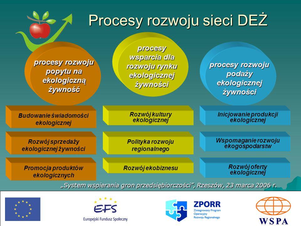 Procesy rozwoju sieci DEŻ