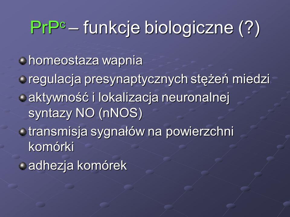 PrPc – funkcje biologiczne ( )
