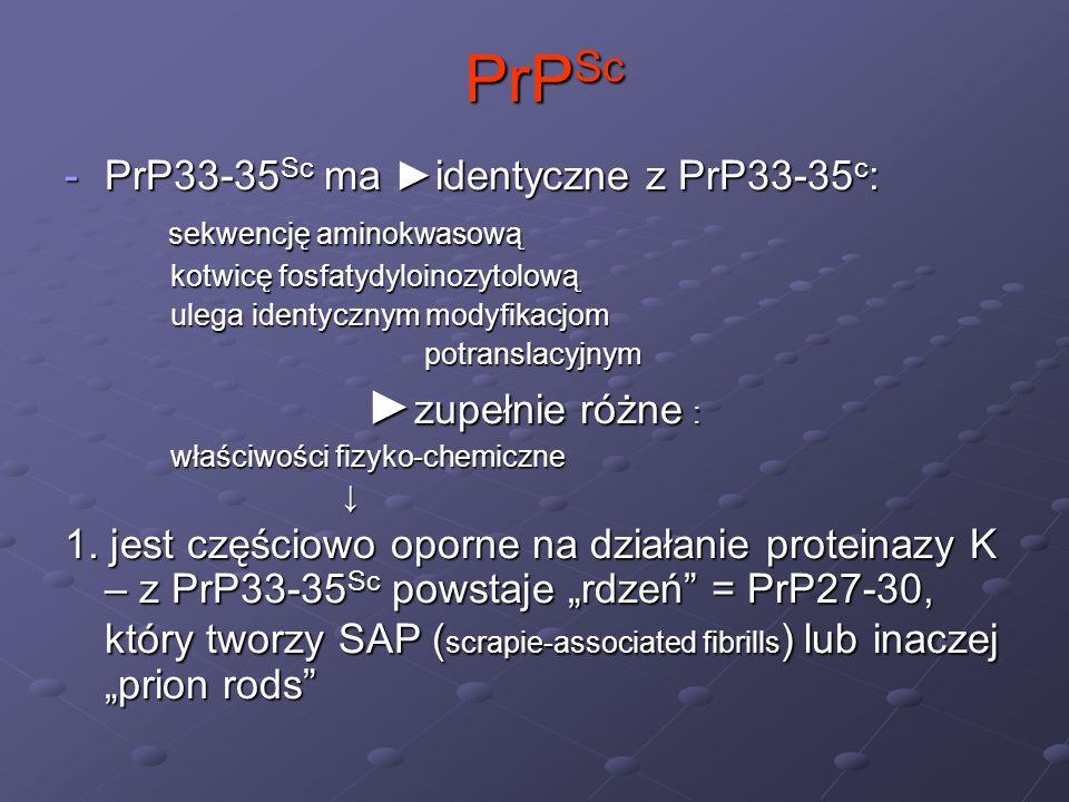 PrPSc PrP33-35Sc ma ►identyczne z PrP33-35c: sekwencję aminokwasową