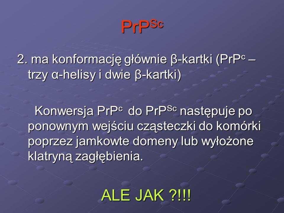 PrPSc 2. ma konformację głównie β-kartki (PrPc – trzy α-helisy i dwie β-kartki)
