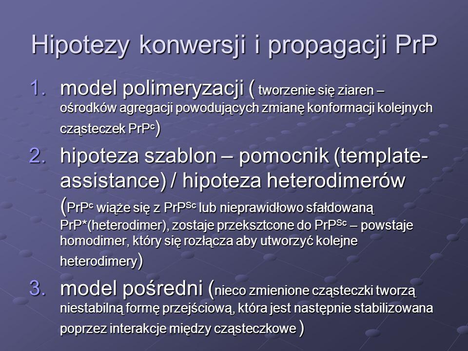 Hipotezy konwersji i propagacji PrP