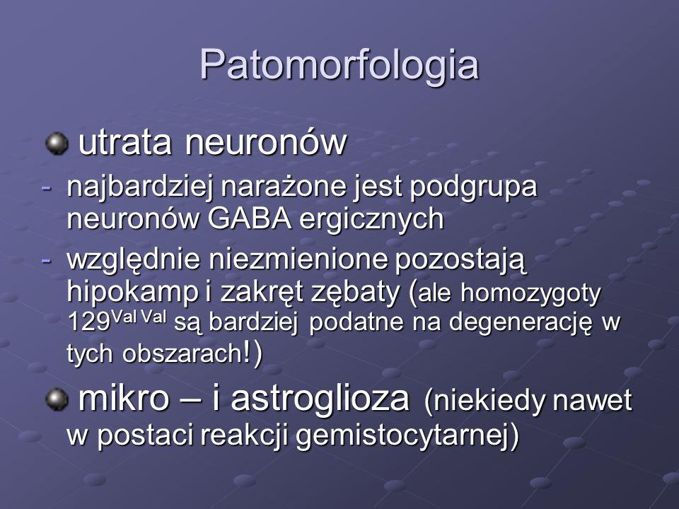 Patomorfologia utrata neuronów