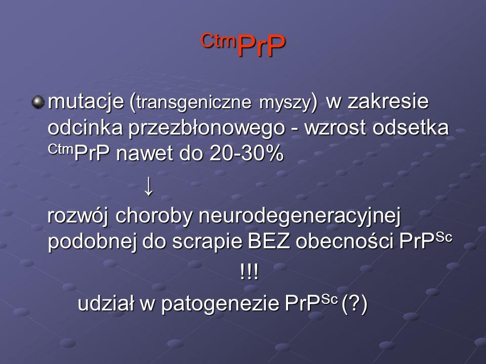 CtmPrP mutacje (transgeniczne myszy) w zakresie odcinka przezbłonowego - wzrost odsetka CtmPrP nawet do 20-30%