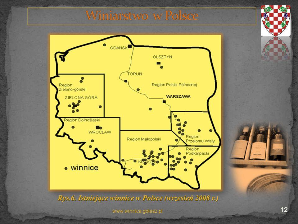 Rys.6. Istniejące winnice w Polsce (wrzesień 2008 r.)