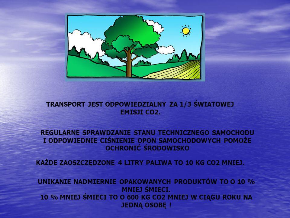 TRANSPORT JEST ODPOWIEDZIALNY ZA 1/3 ŚWIATOWEJ EMISJI CO2.
