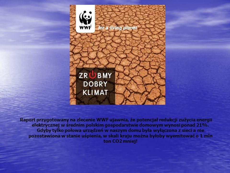 Raport przygotowany na zlecenie WWF ujawnia, że potencjał redukcji zużycia energii elektrycznej w średnim polskim gospodarstwie domowym wynosi ponad 21%.