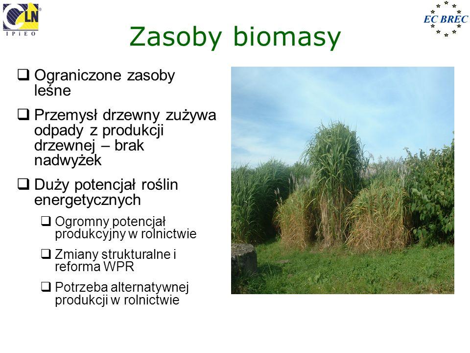 Zasoby biomasy Ograniczone zasoby leśne