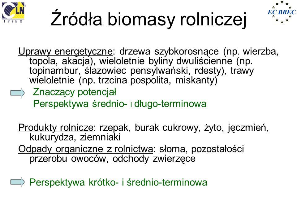 Źródła biomasy rolniczej