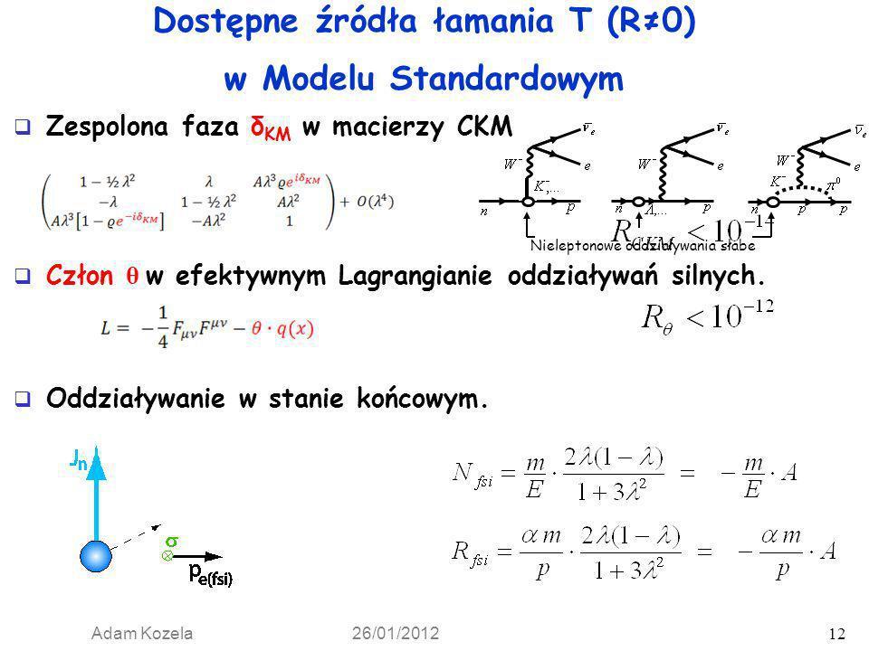 Dostępne źródła łamania T (R≠0) w Modelu Standardowym