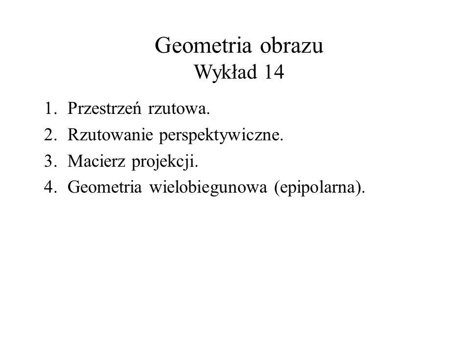 Geometria obrazu Wykład 14
