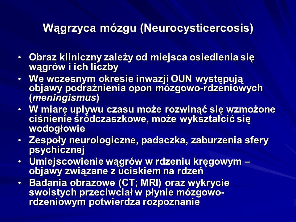 Wągrzyca mózgu (Neurocysticercosis)