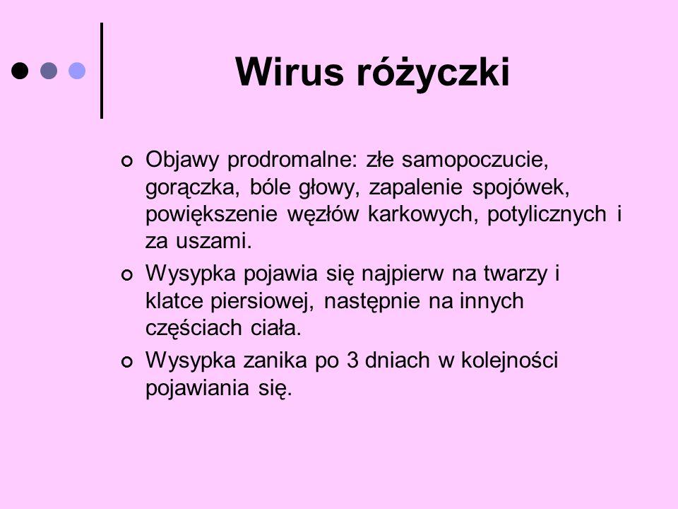 Wirus różyczki