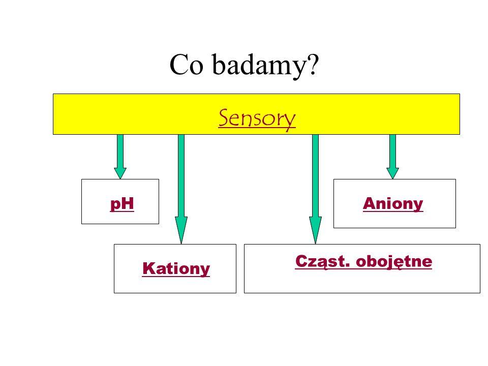Co badamy Sensory pH Aniony Cząst. obojętne Kationy