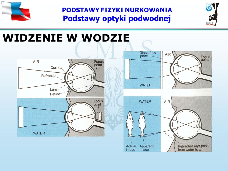 PODSTAWY FIZYKI NURKOWANIA Podstawy optyki podwodnej