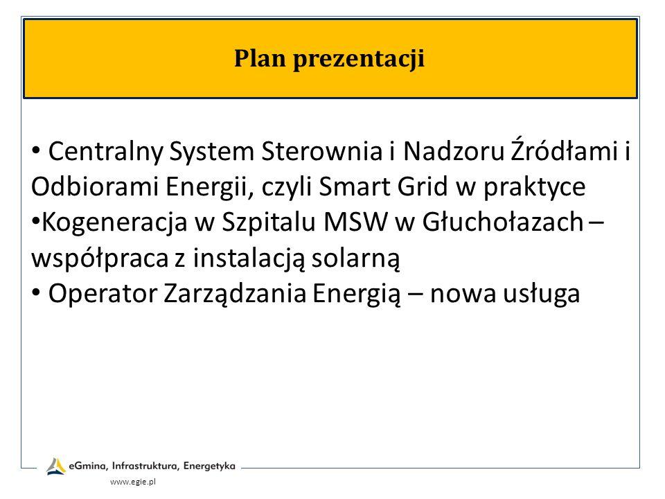 Operator Zarządzania Energią – nowa usługa