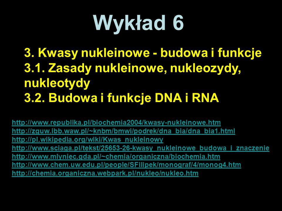 Wykład 6 3. Kwasy nukleinowe - budowa i funkcje
