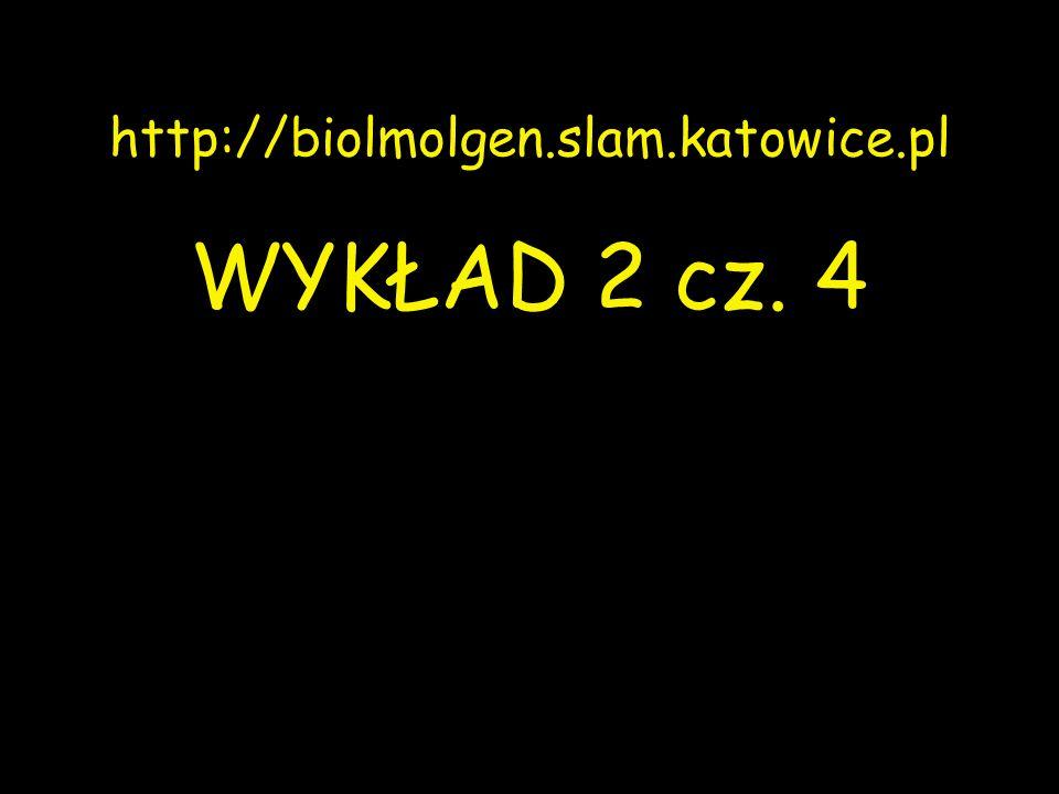http://biolmolgen.slam.katowice.pl WYKŁAD 2 cz. 4