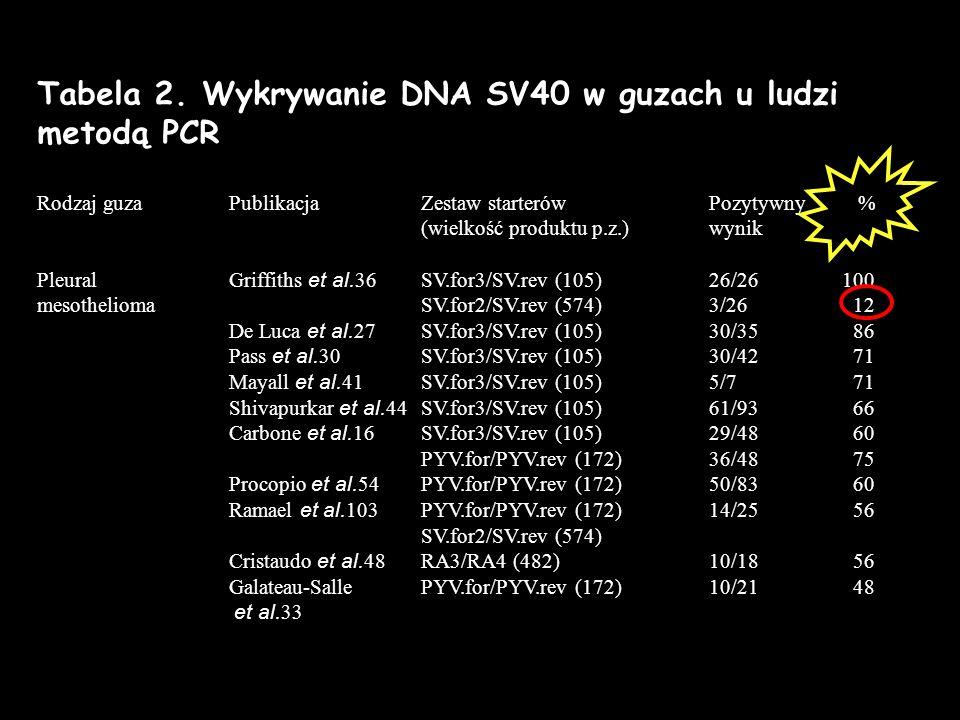 Tabela 2. Wykrywanie DNA SV40 w guzach u ludzi metodą PCR
