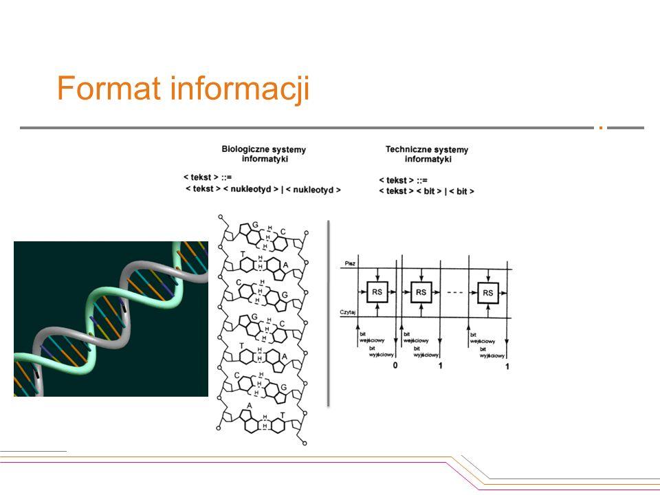 Format informacji