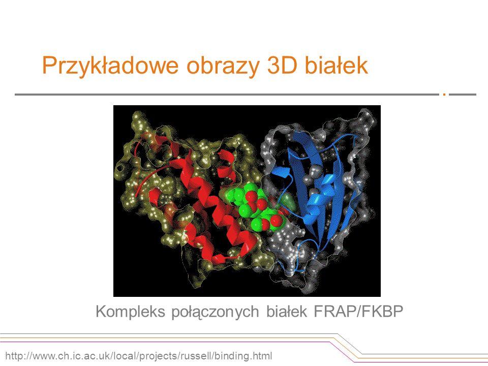Przykładowe obrazy 3D białek