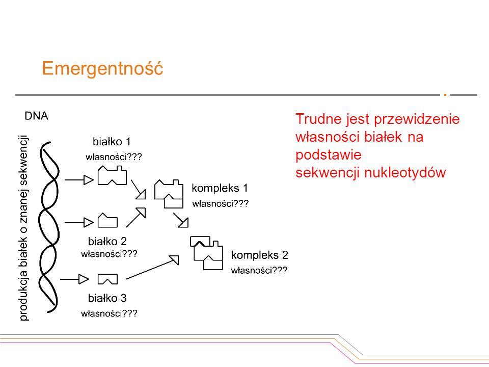 Emergentność Trudne jest przewidzenie własności białek na podstawie