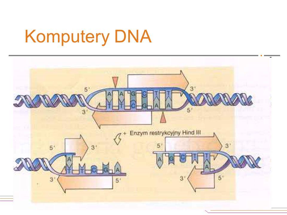 """Komputery DNA Jakimi dysponujemy """"narzędziami"""