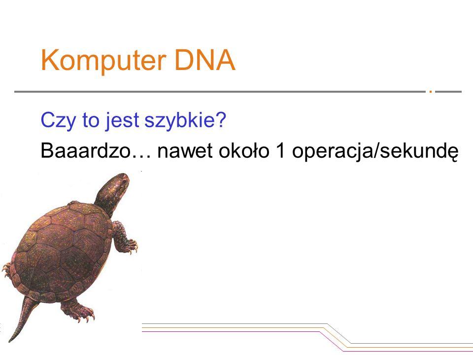 Komputer DNA Czy to jest szybkie