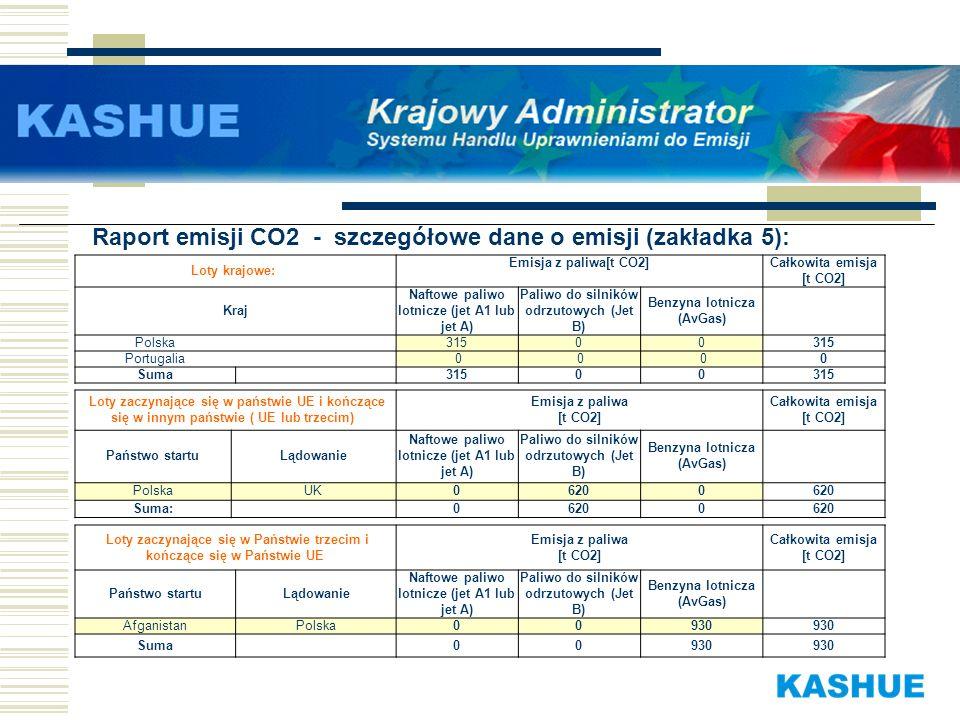 Raport emisji CO2 - szczegółowe dane o emisji (zakładka 5):