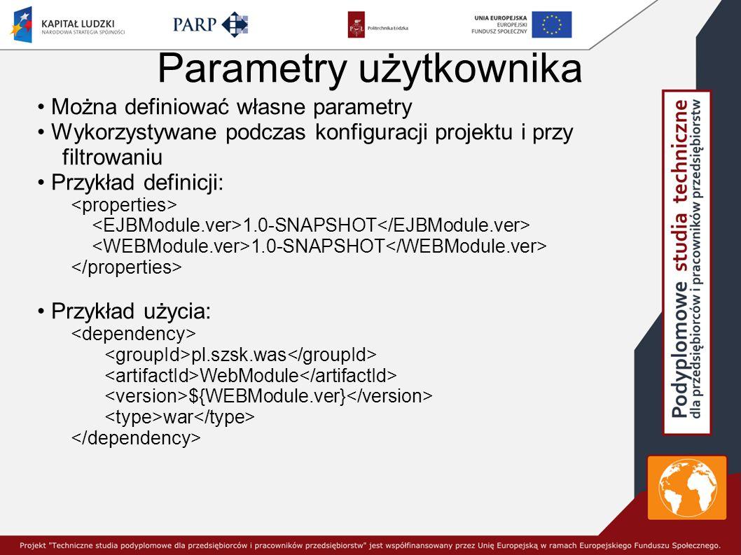 Parametry użytkownika