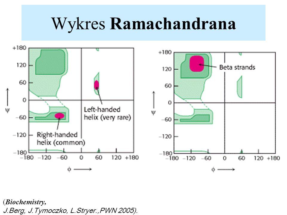 Wykres Ramachandrana (Biochemistry,