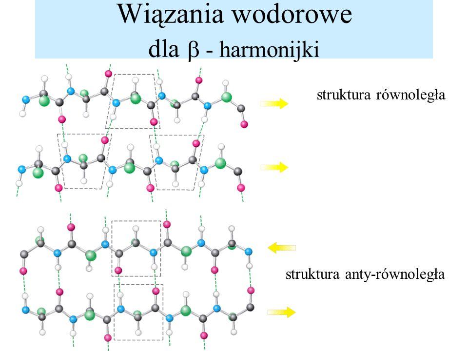 Wiązania wodorowe dla  - harmonijki