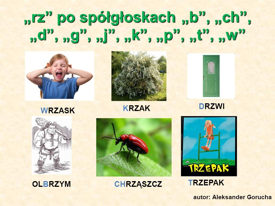 """""""rz po spółgłoskach """"b , """"ch , """"d , """"g , """"j , """"k , """"p , """"t , """"w"""